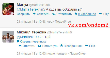 Михаил Терёхин в твиттере
