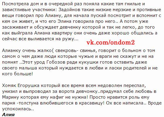 Комментарий про Егора Холявина, Александра Гобозова и Александра Задойнова