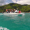 <b>Список из семи бывших участников, которые летят на Сейшелы второй партией</b>