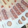 <b>Сколько денег скопил Венц на проекте</b>